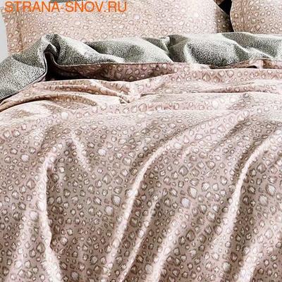 1-MOMAE122 Tango постельное белье хлопок Фланель 1,5-сп (фото, вид 1)