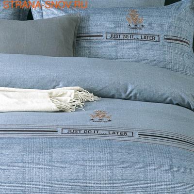 D-194 SailiD постельное белье Сатин Гобелен 2-спальное (фото, вид 1)