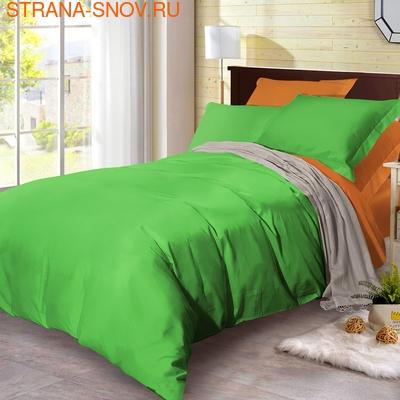 BL-47 SailiD постельное белье хлопок Сатин двухцветный семейное (фото)