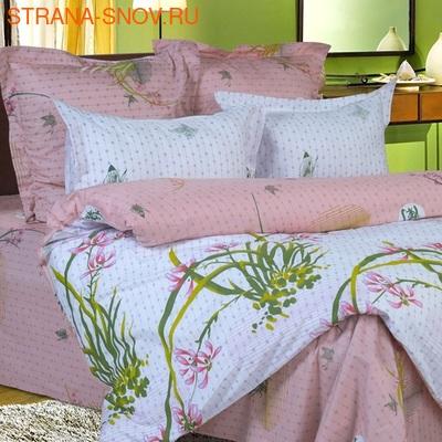 B-070 SailiD постельное белье Сатин 2-спальное (фото)