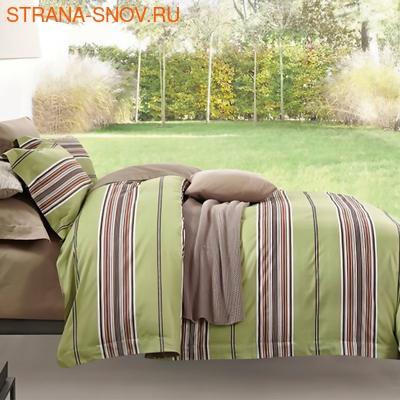 DF02-319-70 постельное белье микросатин Tango Dream Fly 2сп (фото)
