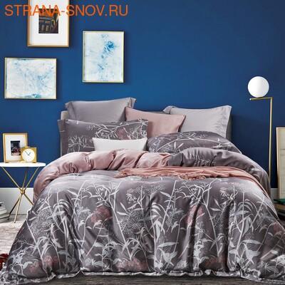 MOMAE129 Tango постельное белье хлопок Фланель евро (фото)