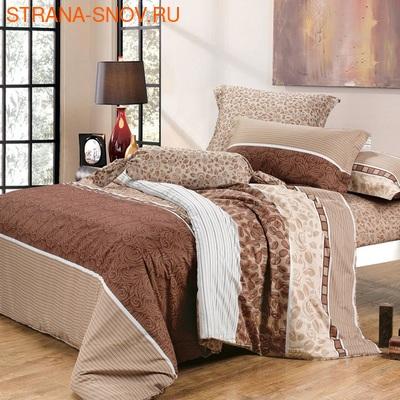 DF02-351-70 постельное белье микросатин Tango Dream Fly 2сп (фото)