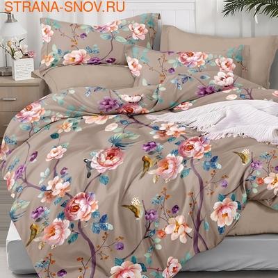 B-096 SailiD постельное белье Сатин Семейное (фото)