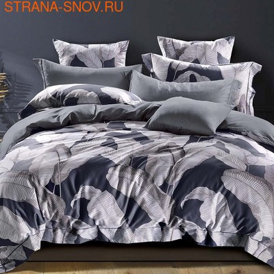 TIS04-158 Tango постельное белье Египетский хлопок 1,5-спальное (фото)