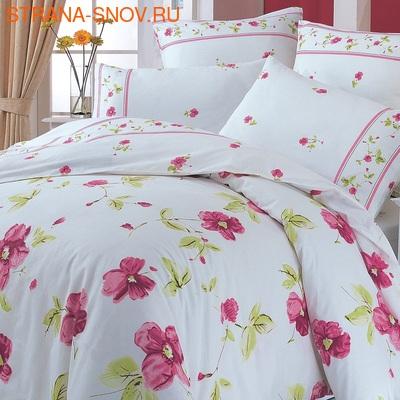 BP-20 SailiD постельное белье хлопок сатин Твил семейное (фото)