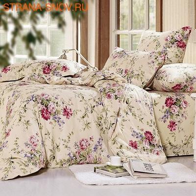 B-042 SailiD постельное белье Сатин 2-спальное (фото)