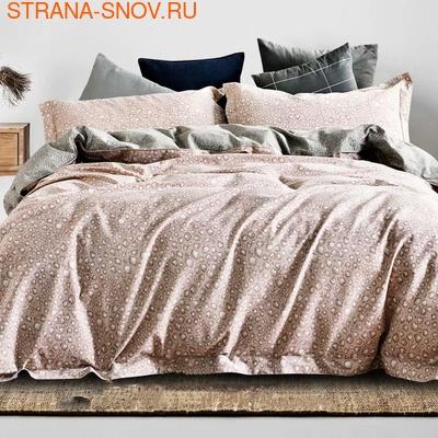 1-MOMAE122 Tango постельное белье хлопок Фланель 1,5-сп (фото)