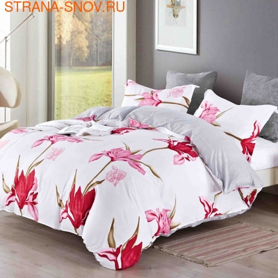 B-150 SailiD постельное белье Сатин 2-спальное (фото)