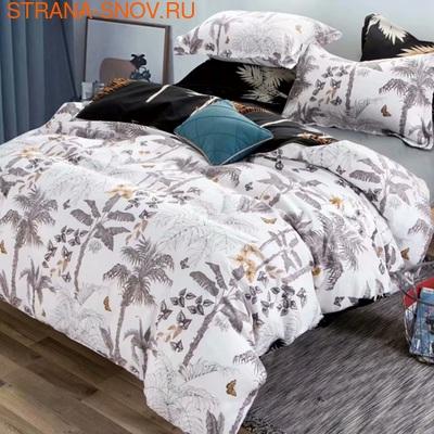 A-150 SailiD постельное белье Поплин 1,5-спальное (фото)