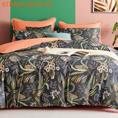 TIS04-838 Tango постельное белье Египетский хлопок Мако сатин 1,5-спальное (фото)