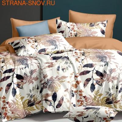 TT5-087 Tango постельное белье Тенсел Премиум семейное (фото)