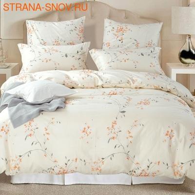 A-034 SailiD постельное белье Поплин Евростандарт (фото)