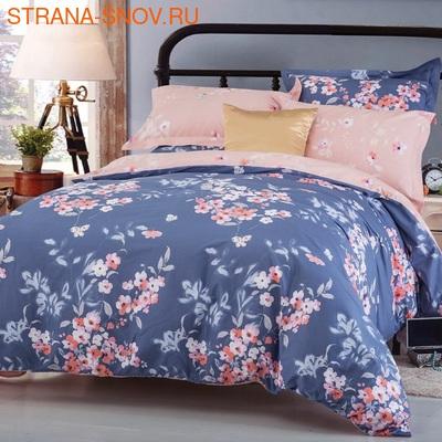 CLA-4-004 Альвитек постельное белье Soft Cotton 2-спальное (фото)