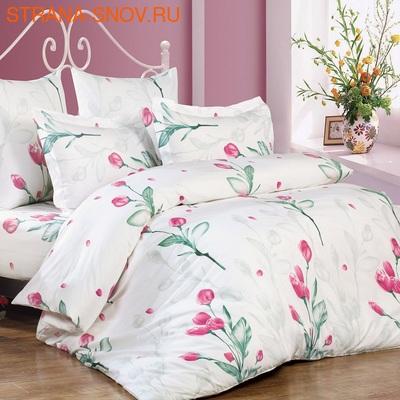 Одеяло Лебяжий пух Стандарт всесезонное 172х205