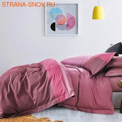 TT4-107 Tango постельное белье Тенсел Премиум 1,5сп (фото)