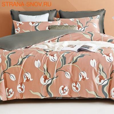 TIS04-188 Tango постельное белье Египетский хлопок 1,5-спальное (фото)
