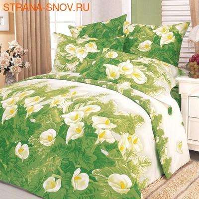 DF01-230 постельное белье микросатин Dream Fly 1,5-спальное (фото)