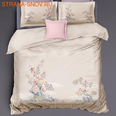 TIS04-140 Tango постельное белье Египетский хлопок 1,5-спальное (фото)