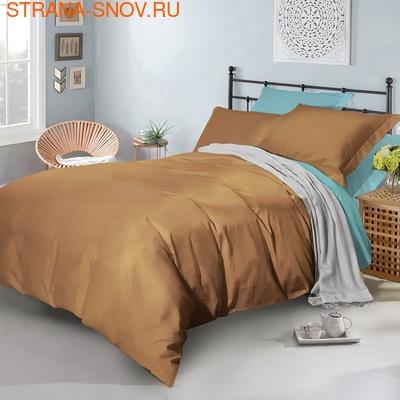 BL-41 SailiD постельное белье хлопок Сатин двухцветный евро (фото)