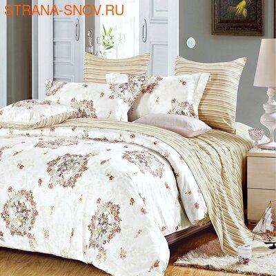DF05-321-50 постельное белье микросатин Tango Dream Fly семейное (фото)