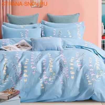 TT6-101 Tango постельное белье Тенсел Премиум евро (фото)