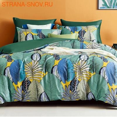 TIS04-185 Tango постельное белье Египетский хлопок 1,5-спальное (фото)