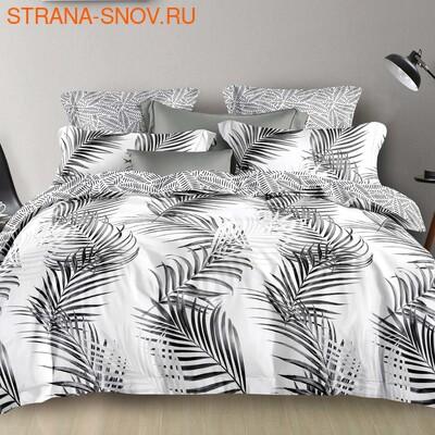 DF05-298-50 постельное белье микросатин Dream Fly семейное (фото)