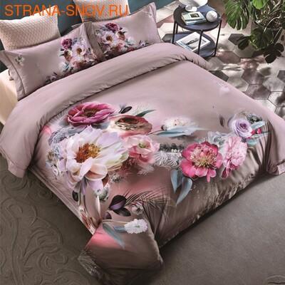 TIS04-834 Tango постельное белье Египетский хлопок Мако сатин 1,5-спальное (фото)