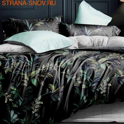 DF03-345 постельное белье микросатин Tango Dream Fly евро (фото)