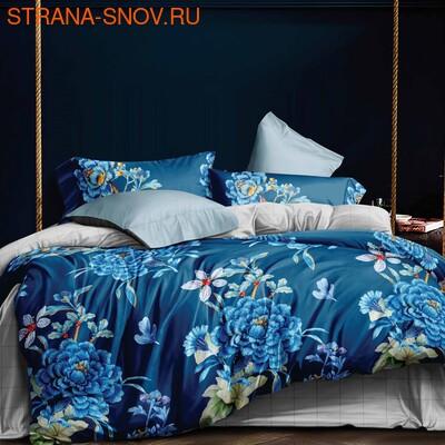 DF05-319-50 постельное белье микросатин Tango Dream Fly семейное (фото)