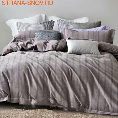 1-MOMAE123 Tango постельное белье хлопок Фланель 1,5-сп (фото)