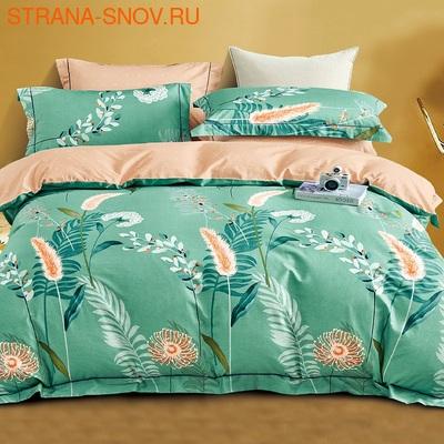 DF02-346-70 постельное белье микросатин Tango Dream Fly 2сп (фото)
