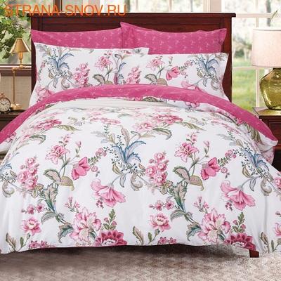 CLA-6-002 Альвитек постельное белье Soft Cotton Евростандарт (фото)