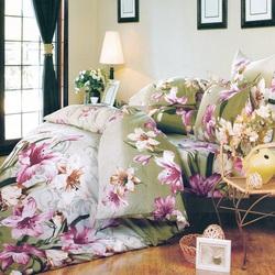 DF03-334 постельное белье микросатин Tango Dream Fly евро