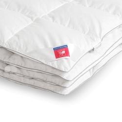 DF03-238 постельное белье микросатин Tango Dream Fly евро
