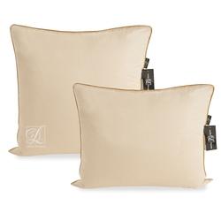 DF02-042-50 постельное белье микросатин Tango Dream Fly 2сп