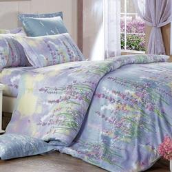 CLA-6-005 Альвитек постельное белье Soft Cotton Евростандарт