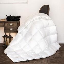 Одеяло верблюжий пух NOIL CAMELUS зимнее 172х205